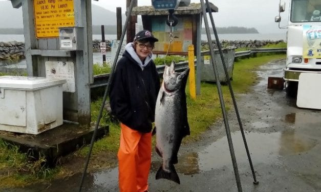 Ketchikan king salmon derby canceled due to concern over wild fish stocks